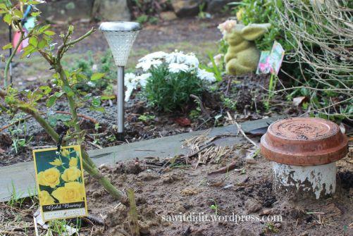 worm feeder ... sawitdidit.wordpress.com