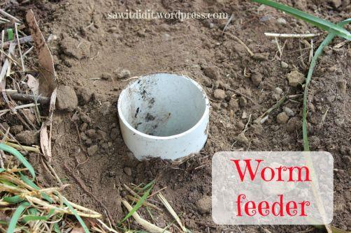 Worm feeder ... sawitdidit.wordpress