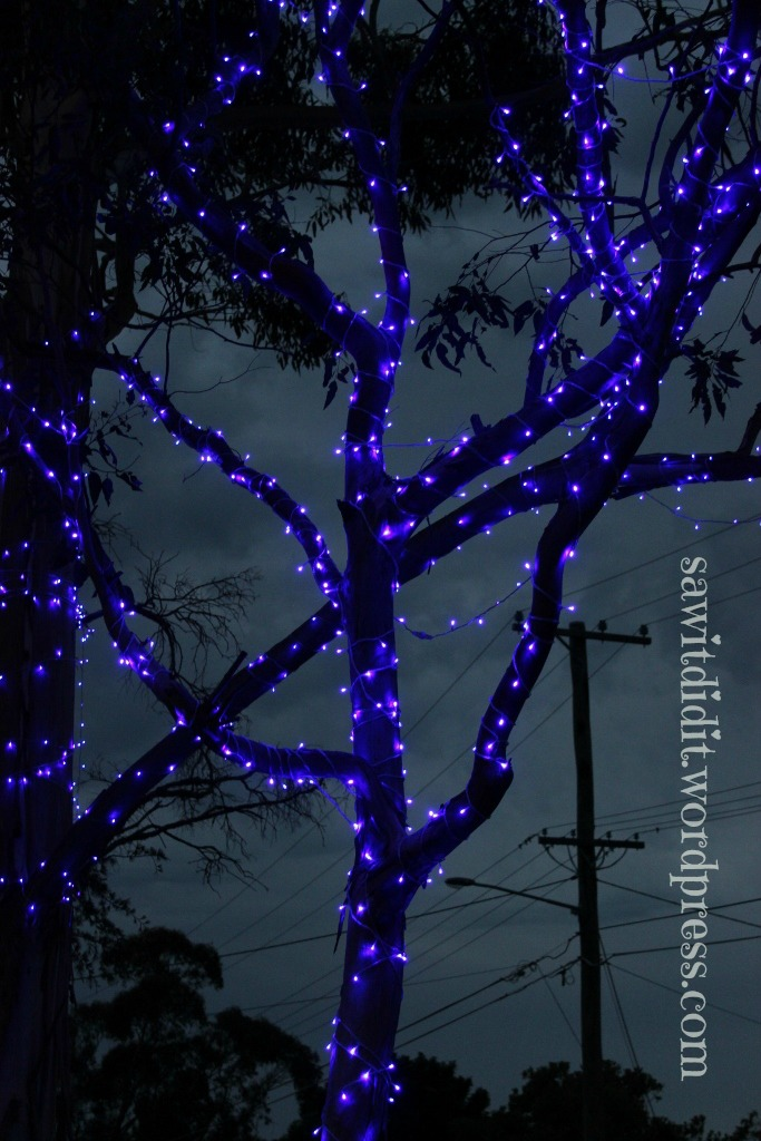 Blue tree lights . sawitdidit.wordpress.com