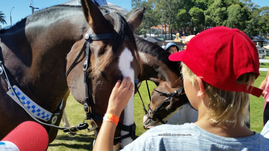 easter show police horse
